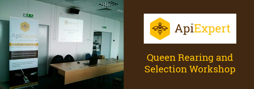 Queen Rearing and Selection Workshop [Video, Craiova Beekeeping Fair]
